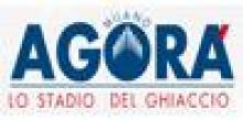 Agorà Ice School (Scuola di Pattinaggio su Ghiaccio)