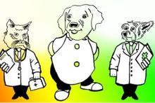 Associazione B.A.U. Benessere Animale e Umano - Centro Italiano di Pet Therapy Metacorporea©