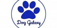 Dog Galaxy Centro Cinofilo