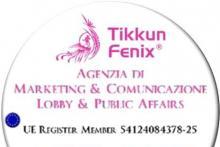 Tikkun Fenix Business Coaching