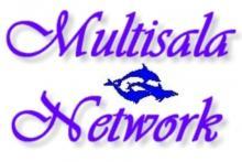 Multisalanetwork