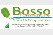 Il Bosso formazione soc. coop. a r.l.