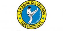 Corso di Taekwon-do - Tkd Tigers - Krav Maga - Kick Boxing