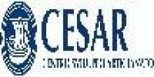 Cesar Centro Sviluppo Artigianato