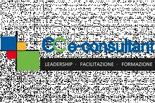 E-Consultant