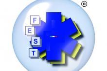 F.E.S.T ITALIA srl