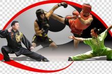 Scuola di Kung Fu Tradizionale Cinese