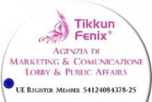 Tikkun Fenix Business Coaching