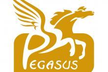 Pegasus Formazione