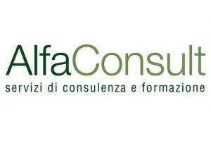 Alfa Consult Srl
