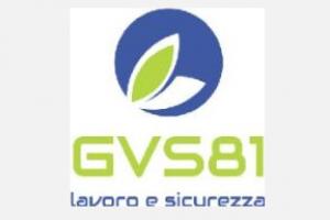 GVS81 Srl