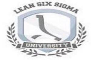 The Lean Six Sigma Company Italia s.r.l.