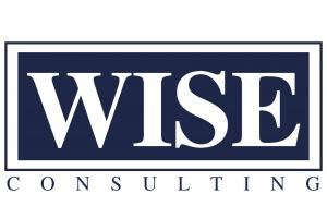 Wise Consulting