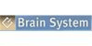 Brain System