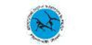 Associazione Italiana di Capoeira da Angola