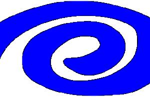 Istituto Reich