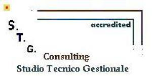 S.T.G. Consulting