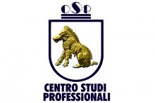 Centro Studi Professionali - Istituto Gamma