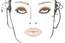 anatomia del volto