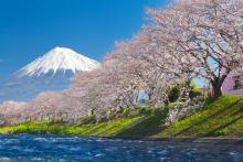 Corso di Giapponese