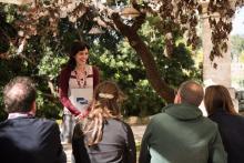 Speak: Simulazione di una presentazione in lingua