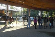 Pratica a cavallo