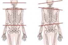 posturale 2