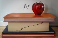 Corso di introduzione all'Educazione Alimentare Infantile e alla Pedagogia Auxologica
