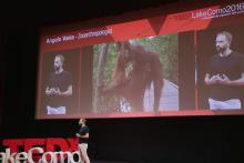 Angelo Vaira a TEDx Lake Como